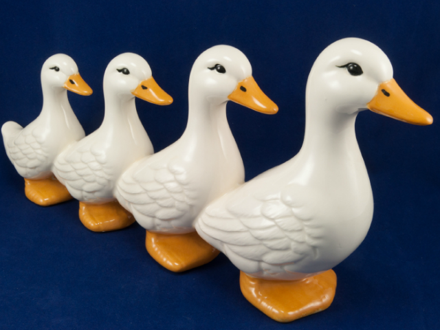 You Have Your Ducks in a Row for the Employer Mandate?